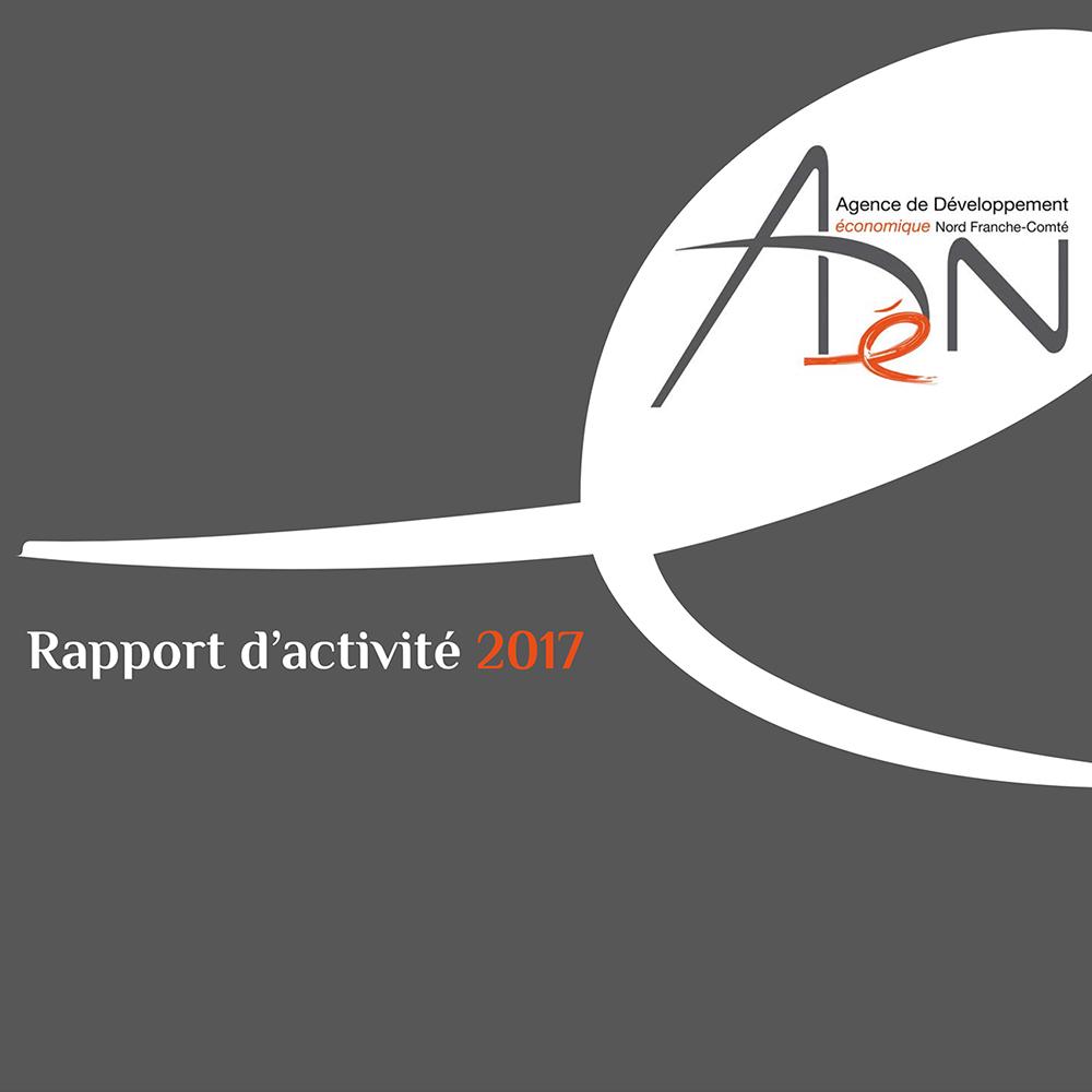Anual report 2017
