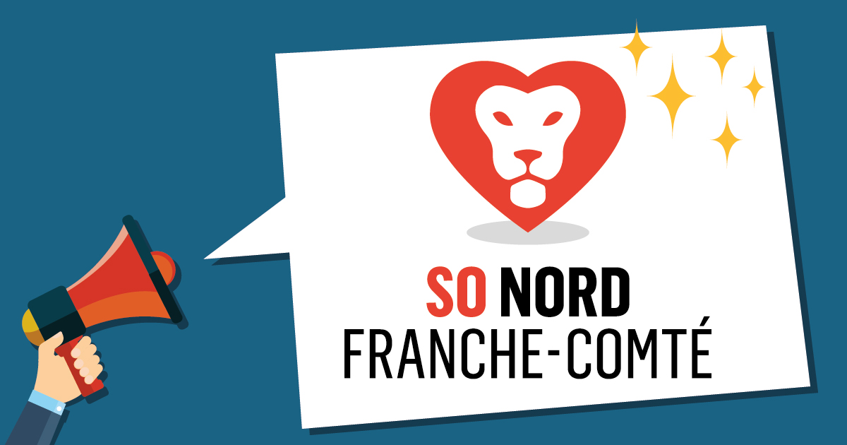 Retrospective 2019 So Nord Franche-Comté